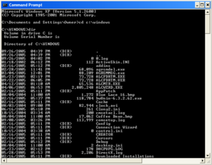 Command Prompt and What You Can Expect