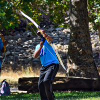 The skill of shooting arrows and learn it