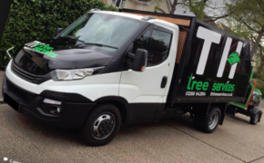 What is the roles and responsibilities of a tree surgeon?